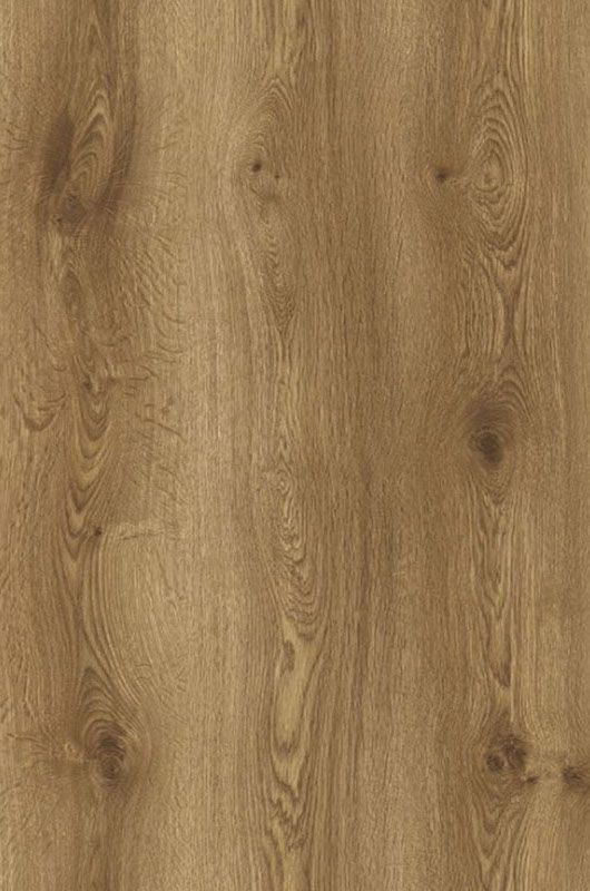 Canadian Grande Oak